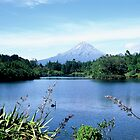 Mt Taranaki by Louise Marlborough Creative