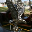 Hudson Super Six - Eagle by Suzanne Fatchen-Jaeschke