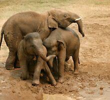 Group hug by Kyra  Webb