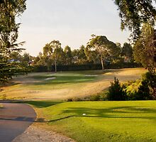 Riversdale Golf Course by Nickharding