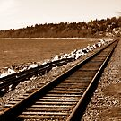 Train tracks by Anita Kovacevic