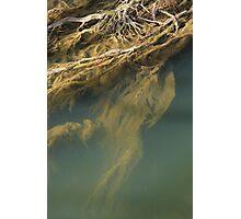 Beneath the surface III Photographic Print