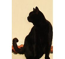 Side View Silhouette of A Black Cat Sitting On A Roof Photographic Print