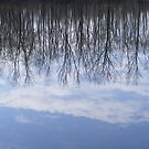 reflected clouds by Dave & Trena Puckett