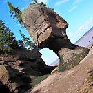 Alien Rock by terrebo