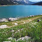 Medicine Lake 2 - Jasper by Barbara Burkhardt