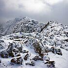 Snowdonia IX by Andrew Briggs