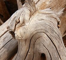 Wood devil by zumi