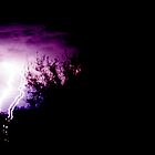 NT Lightning by Tarnee
