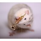 I love the trumpet! by Ellen van Deelen