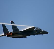 Air Force F-15E Strike Eagle by Jonicool