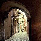 Alleyway in Brussels, Belgium by Elana Bailey
