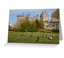 Dromoland Castle Duck walk! Greeting Card