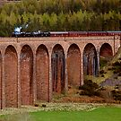 Steam Train crossing the Clava Viaduct by Fraser Ross