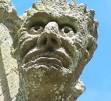Close up of Gargoyle by brittle1906