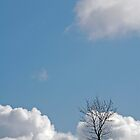 lonely tree 2 by funkybunch