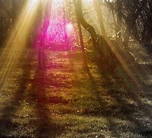 Spiritual Sunset by Marko Palm