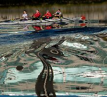 Something Lurking in the Lagan? by Alan McMorris