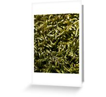 knitted moss Greeting Card