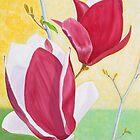 Alexander Magnolias by Thi Nguyen