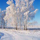 Winter's Tale by Alexandr Zadiraka