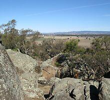 View from Morgan's Lookout, Walla Walla, NSW by David Hunt