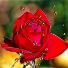 Garden of Love by Pat Moore