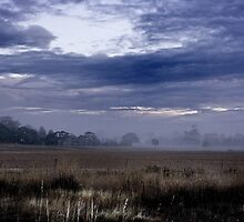 Farmland at Dawn by Andrew Guthrie