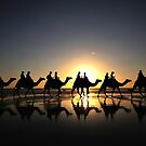 Camels at Sunset by toosilver
