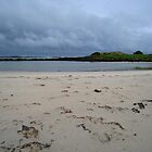 Port Fairy by vonb