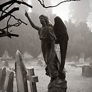Grange Fell Cemetery, Cumbria by beanphoto
