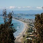 Port Ohope by Tepara