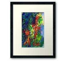 Firecracker Vine (Pyrostegia): a Thai flower. Framed Print