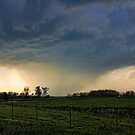 What A Storm by Michael Coots