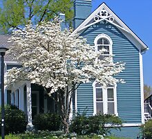 Spring at a Victorian House by raindancerwoman