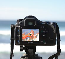 Pentax K20D debuts at 2009 Rip Curl Pro by Andy Berry