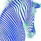 Dreamy Blue Metallic Zebra by ellearden