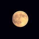 Lune D'or by Jarede Schmetterer