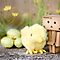 Danbo&#x27;s first easter... by Natalia Campbell