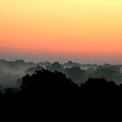 Morning In Missouri by David Dunham