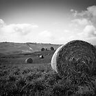 Hay Bale by Melinda Kerr