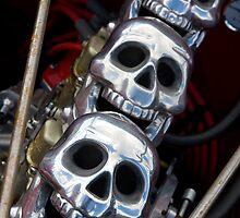 Three Skulls by Jason Adams