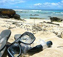 Lord Howe Island Blinky Beach by Maike