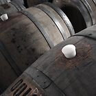 Barrels by Paul McFarlane