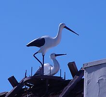 Roof top Storks and Nest Sculpter by Linda Scott