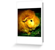 Golden Ernie Greeting Card