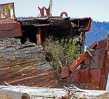 Shipwrecked  by Tamara Valjean