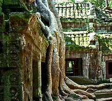 Ta Prohm by Ronojoy