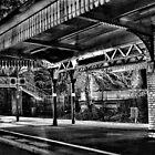 Mono Rail by Catherine Hamilton-Veal  ©