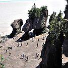 Fundy Bay by terrebo